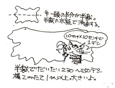 ap27_001.jpg