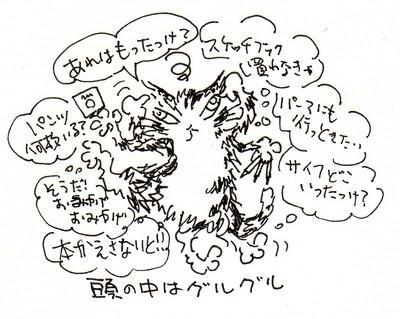 nv21_001.jpg