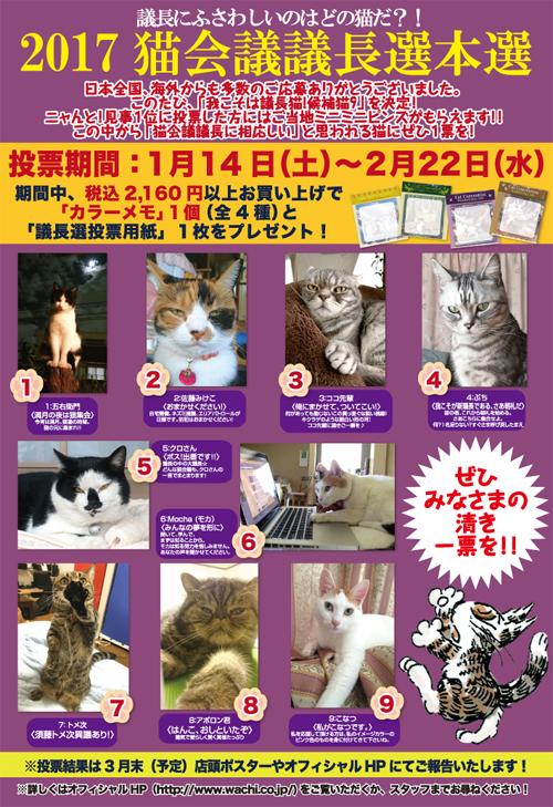 猫会議募集9猫ポスター2017修正.jpg