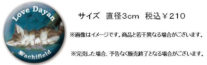 キディ第2弾バッジ加工済み.jpg
