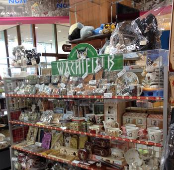 ノアスクエアアリオ市原店店舗写真.JPG