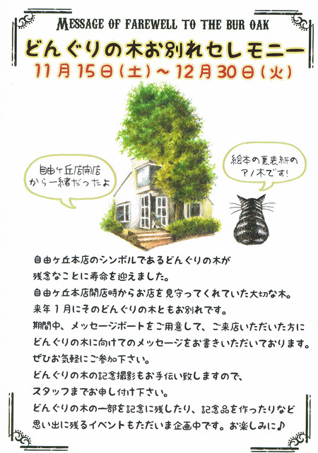 どんぐりの木POP.jpg