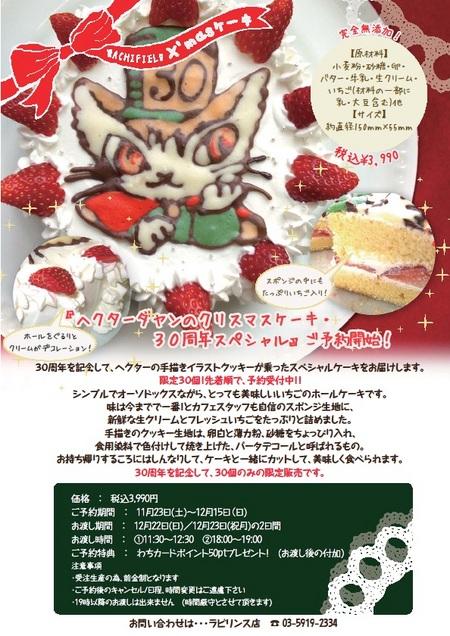 2013年クリスマスケーキ.jpg