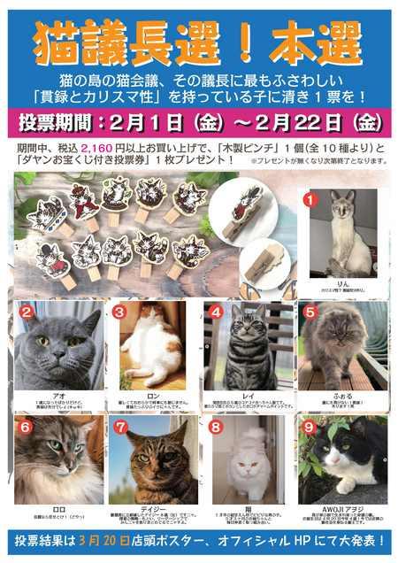 2019猫会議本選ポスター.jpg