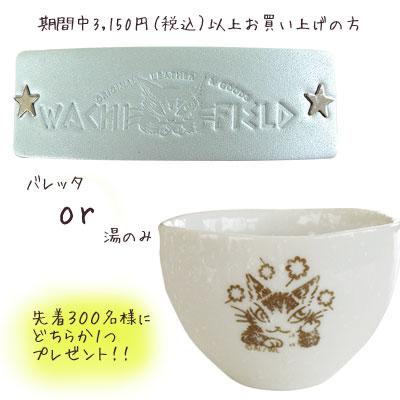 tatikawa001.jpg